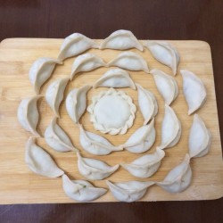 苜蓿猪肉饺子(1)