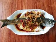清蒸鲈鱼(16)